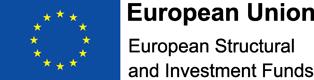 ESIF partners